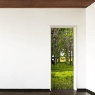 bosco-natura-adesivo-adesivoporta-door-rivestimento-wrapping-decoroporta-roma-adesivi-fotopersonalizzate-creailtuo
